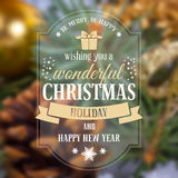 Christmas greeting card. With holiday still life on background. Blurred effect. Vector illustration Stock Image