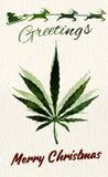 Christmas greeting card with marijuana leaf and Santa Royalty Free Stock Photos