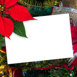 Christmas greeting card poinsettia decoration with copy space Stock Photos