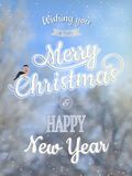 Christmas greeting card - snowy branches. EPS 10 Stock Photography