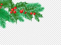 Christmas greeting card template background of holly leaf wreath and New Year fir. Christmas greeting card template background of holly leaf wreath and New Royalty Free Stock Images
