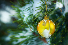 Christmas greeting card. yellow Christmas ball on snowy spruce branch, Christmas ball hanging on spruce branch. Christmas card. yellow Christmas ball on snowy Stock Images
