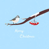 Christmas Greeting. Merry Christmas message with detailed bird on a branch Stock Illustration