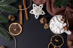 Christmas greetings card with balls, cones and fir branches. royalty free stock photos