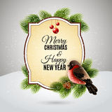 Christmas greetings card with robin bullfinch Royalty Free Stock Images