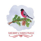 Christmas Greetings. Stock Images