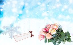 Christmas greetings, festive background for the images. Stock Photos