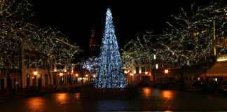 Christmas in The Hague Royalty Free Stock Image
