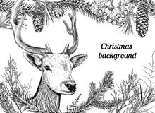 Christmas hand drawn background with deer Royalty Free Stock Photography