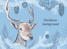 Christmas hand drawn background with deer Royalty Free Stock Image
