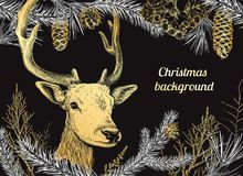 Christmas hand drawn background with deer Stock Photography