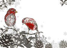Christmas hand drawn background with winter bird Royalty Free Stock Images