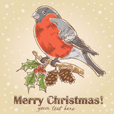 Christmas hand drawn ink card with bullfinch. With red breast sitting on a tree with holly berries and fir cones royalty free illustration