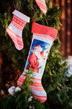 Christmas handmade blue and red fabric gift socks with fir branches in winter Stock Images