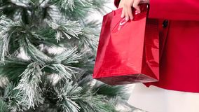 Christmas hands woman with red bag, tree in background stock video