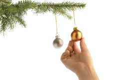 Christmas hanging on balls. Christmas tree and children hand hanging on a decorative ball royalty free stock photo