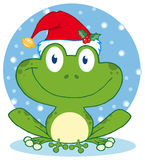 Christmas happy frog Royalty Free Stock Images