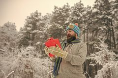 Christmas happy man with beard hold present box. stock photography