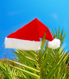 Christmas hat on palm tree Royalty Free Stock Image