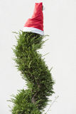 Christmas hat on Tree Stock Photos