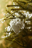 A Christmas heart hanging on a Christmas tree Royalty Free Stock Image
