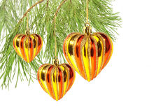 Christmas hearts on pine tree branch isolated Royalty Free Stock Photography