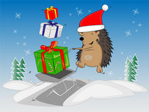 Christmas hedgehog Stock Photo