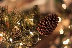 Holiday background with lights and pine cone. Christmas holiday background with twinkly lights and pine cone royalty free stock photos