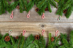 Christmas holiday border with evergreen branches and candy canes Stock Image