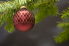 Christmas Holiday Decoration Ornament Stock Images