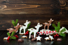 Christmas holiday gingerbread baby deer or fawn cookies Stock Photos