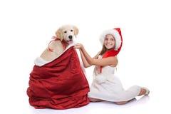Christmas holiday pet dog gift. Christmas holiday childs pet dog gift Royalty Free Stock Photo