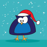 Christmas holiday silly owl. Christmas holiday silly blue owl Royalty Free Stock Images