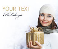 Christmas holidays Stock Image