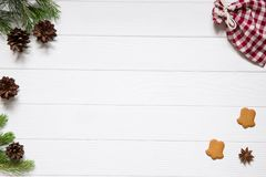 Christmas holidays background, copy space. Fir and pine tree bra stock image