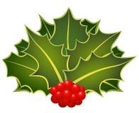 Christmas holly Stock Photography