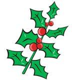 Christmas holly. Illustration of stylized Christmas holly stock illustration