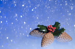 Christmas Holly. Christmas image of pine cones and holly on blue background with defocused snowflakes Royalty Free Stock Photography