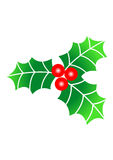 Christmas Holly. Berries and leaves royalty free illustration