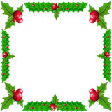 Christmas holly Stock Photos