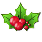 Christmas holly vector illustration