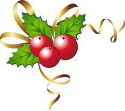Christmas holly. Vector illustration of christmas holly Royalty Free Stock Photos