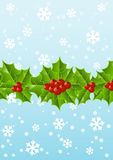 Christmas holly background Stock Images