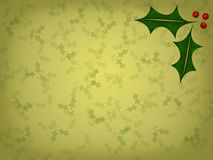 Christmas Holly Background Stock Image