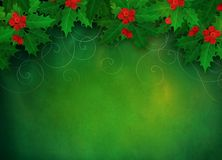 Christmas holly background. Royalty Free Stock Photos