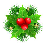 Christmas holly with berries and fir tree branches. For  posters, icons, greeting cards, print projects Stock Image