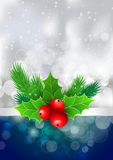 Christmas holly with berries and fir tree branches. For  posters Royalty Free Stock Photography