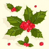Christmas holly berries Royalty Free Stock Photo