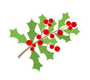 Christmas holly berry branch Stock Photos