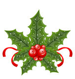 Christmas holly berry branches and ribbon Royalty Free Stock Images